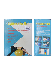 LS-3262 Gym Ball with Massage and Foot Pump, Grey