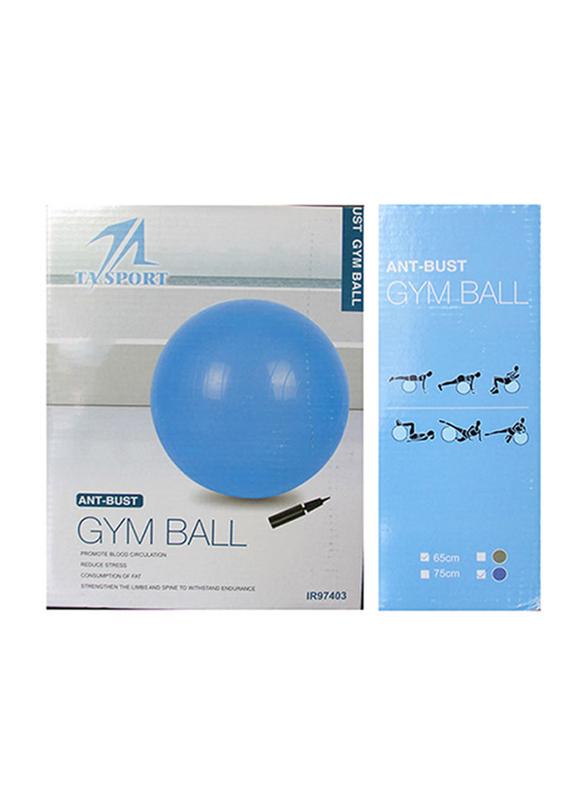 Anti-Brust Gym Ball with Pump, 65cm, Grey