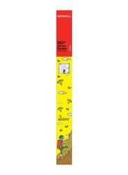 Nataraj 10-Piece Shatter Proof Ruler, 30cm, Clear