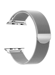 Max & Max AWT05 Metal Strap for Apple Watch 42mm/44mm, Silver