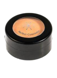 Missha The Style Perfect Concealer, 3gm, Light Beige