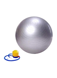 Winmax Gym Exercise Ball with Pump, WMF09945S, 65cm, Silver