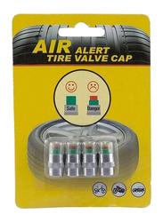 Autoplus Tyre Pressure Monitor Valve Cap, Silver