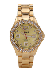 Colori Analog Watch for Women with Stainless Steel Band, Water Resistant, 5-COL, Gold