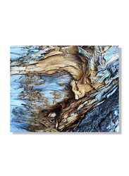 OraOnline Abstract Printed Stretched Canvas, Modern Wall Collection, WACC-A210