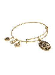 Alex and Ani Because I Love You, Friend Expandable Charm Bracelet for Women, Rafaelian Gold-Tone, Brown