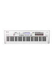 Korg Kross 2 Limited Edition Synthesizer Workstation Keyboard, 61 Keys, Grey/White