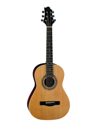 Samick ST6-2-NAT Greg Bennett Design Acoustic Guitar, Rosewood Fingerboard, Brown