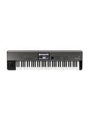 Korg Krome EX Music Workstation Keyboard, 73 Keys, Black