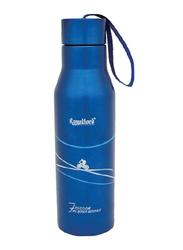 RoyalFord 450ml Stainless Steel Vacuum Bottle, RF6605, Blue