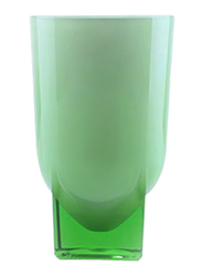 RoyalFord 240ml Acrylic Glass, RF6888, Green