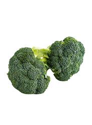 Efreshbuy Broccoli Spain, 1 Kg