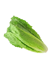 Efreshbuy Lettuce Long Oman, 500g