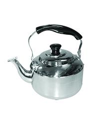 Raj 4 Ltr Weilong Induction Steel Tea Kettle, STK003, Silver